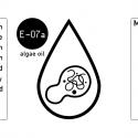 Algae-Oil-label