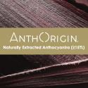 anthocyananic-pic